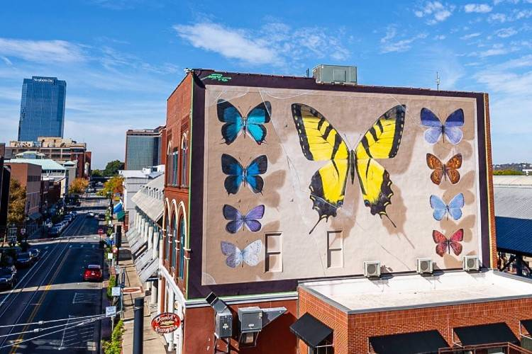 Butterfly-Mural_2020-11-12_justkids-ig_v1_750x500