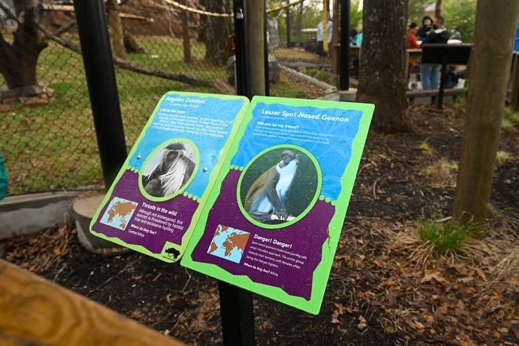 Colobus Monkey Sign